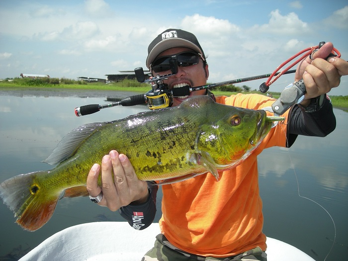 Fly fishing gear for Bass