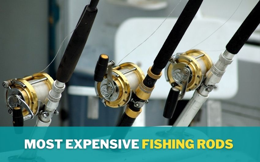 Most Expensive fishing rods