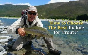 best fly fishing line for trout