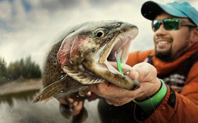 Do trout eat in cold weather