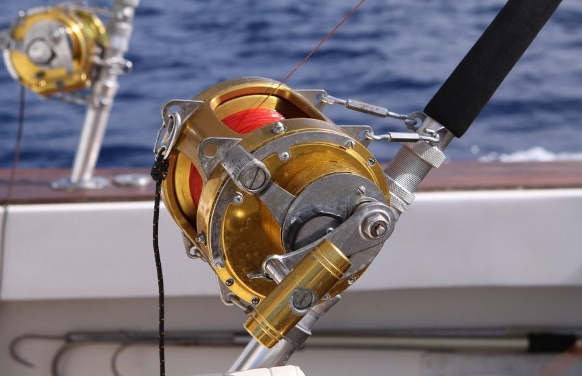 fishing reels types