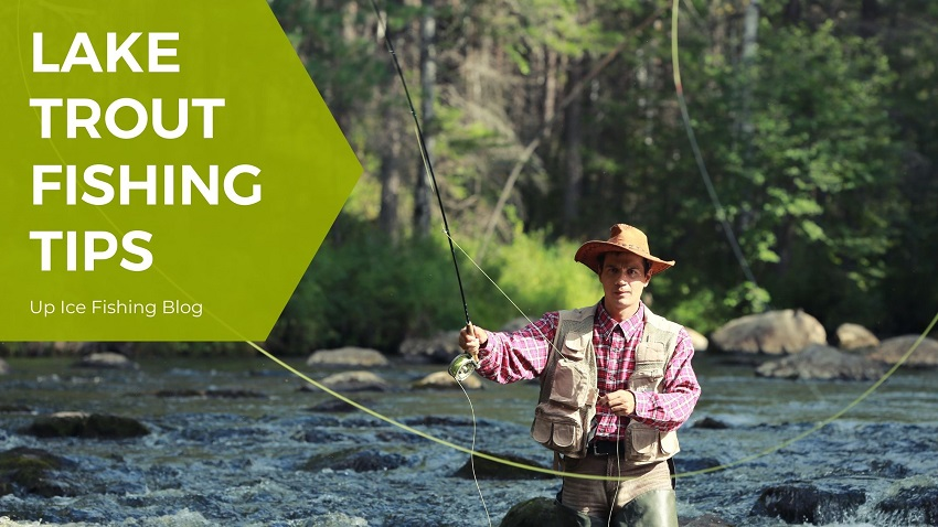 how to catch rainbow trout in a lake