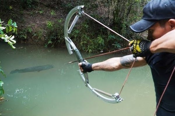 crossbows for fishing