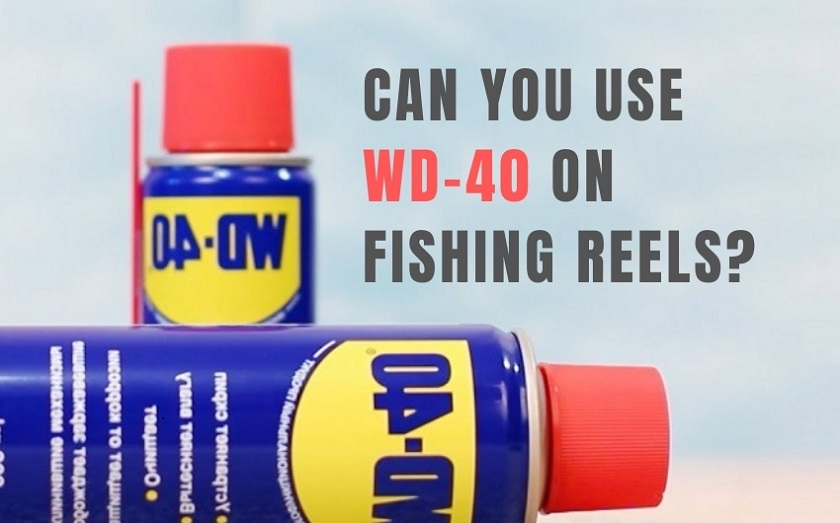 can you use wd40 on fishing reels
