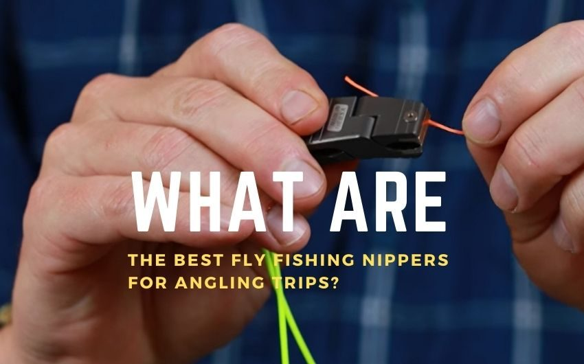 best fly fishing nippers