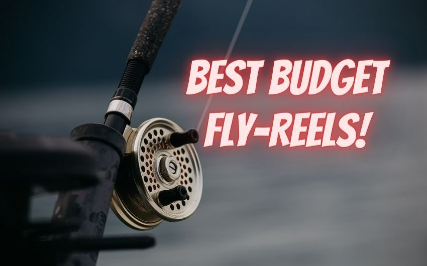 best fly fishing reels for the money